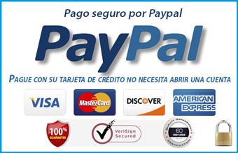 pago-seguro-paypal